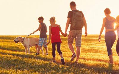 Residence Permit as spouse / partner of a USA citizen